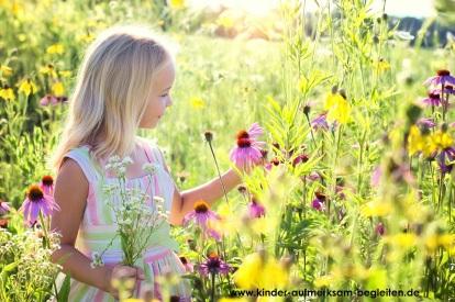 little-girl-2516578